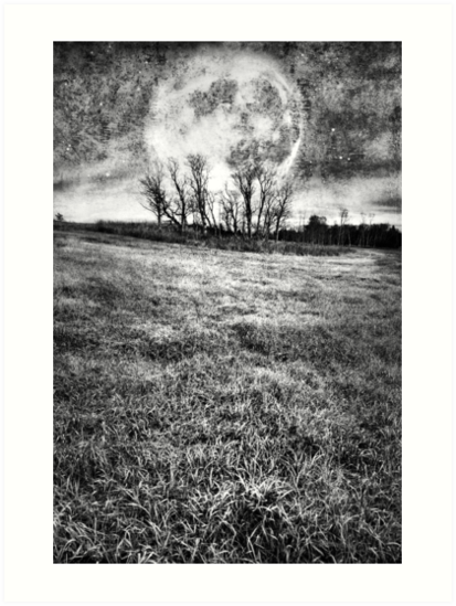 COLD NIGHTS UNDER THE HARVEST MOON by Theresa Tahara