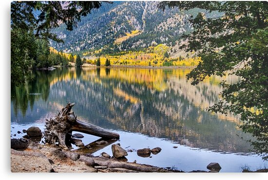 A Peek Into Cottonwood Lake by Bo Insogna