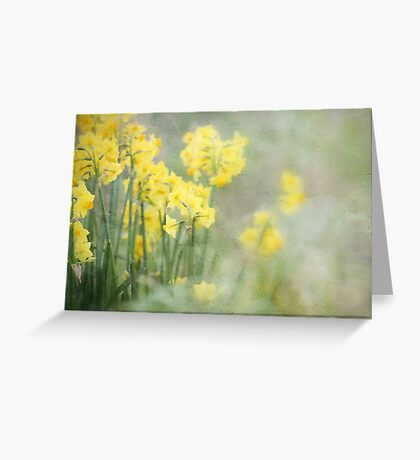 Kissed by the Sun Greeting Card