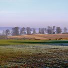 First Frost by Trevor Kersley