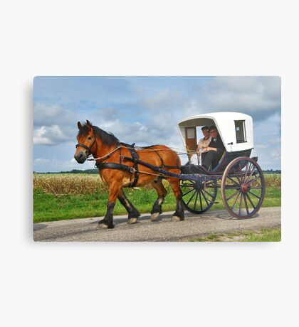 Together in a carriage Metal Print