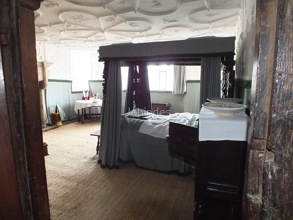 Plas Mawr Bedroom by Johindes