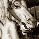 Carousel 57 by Joanne Mariol