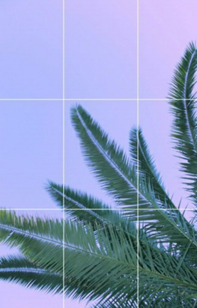 Palm Trees Ombre Sky Grid Aesthetic By Kosi Frances