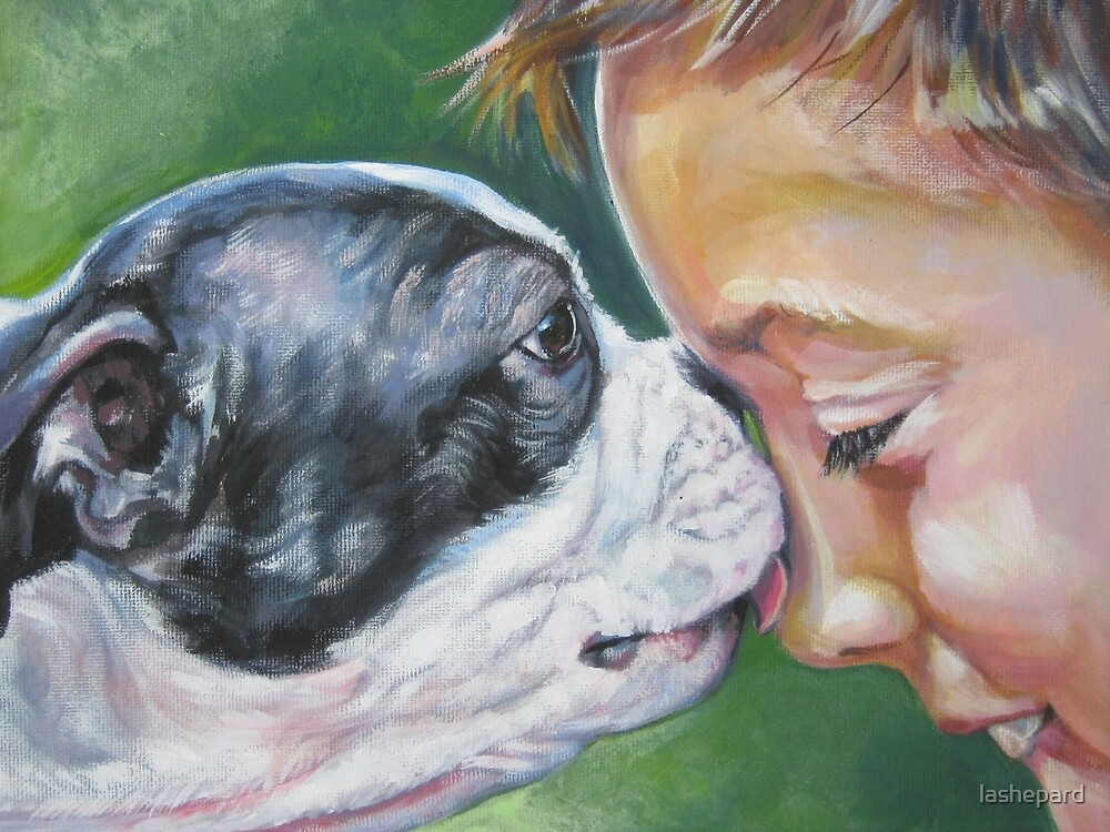 Boston Terrier Fine Art Painting by lashepard