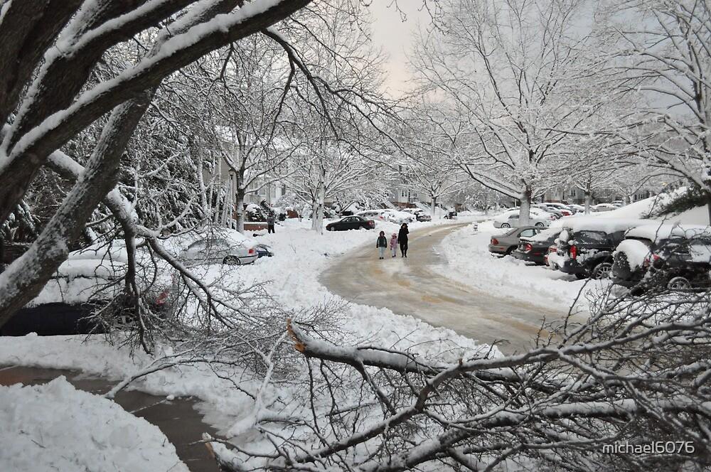 Snowstorm - Burke, Virginia by michael6076