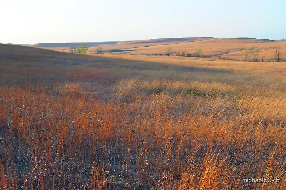 Tall Grass Prairie - Kansas by michael6076