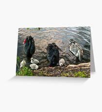 Swan Family #2 Greeting Card