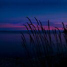 Door County Sunset by David Lampkins
