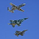 US Air Force Warfare Center Flyby by Henry Plumley