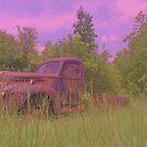 Truck  by bulldawgdude