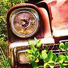 HEAD LIGHT by bulldawgdude