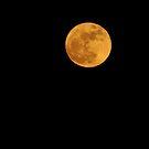 Full Moon Over Burnaby by Michael Garson
