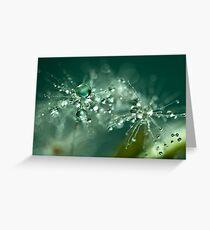 Dewdrop on Dandelion - 4 Greeting Card