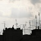 Rome roofscape by Murray Swift