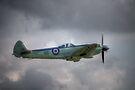 Supermarine Seafire MkXVII SX336 by Nigel Bangert