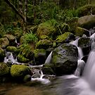 Just Let Me Dream - Upper Boulder Creek - by Charles & Patricia   Harkins ~ Picture Oregon