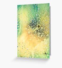 Dewdrops on Dandelion - 11 Greeting Card