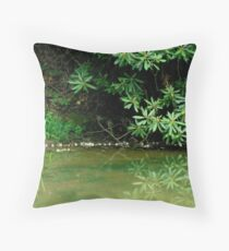 WATER REFLECTIONS  ^ Throw Pillow