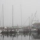 Misty Harbor by Thomas Murphy