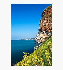 spring slope Photographic Print