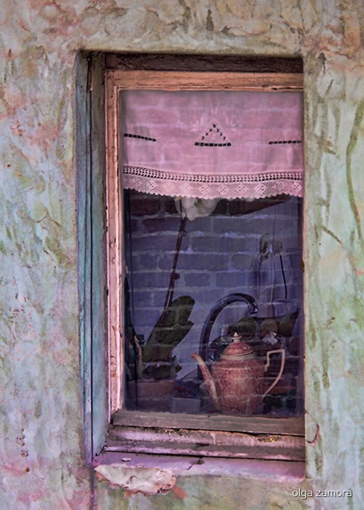 The Pink Window by olga zamora