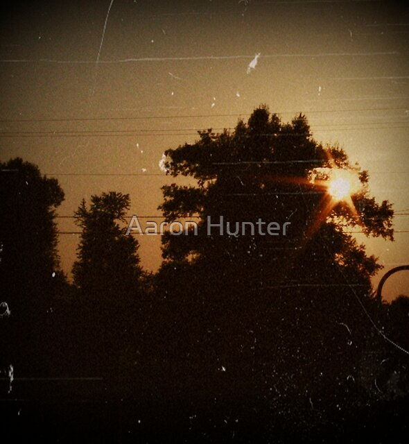 Vintage Gold by Aaron Hunter