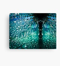 Born A Dragonfly Canvas Print
