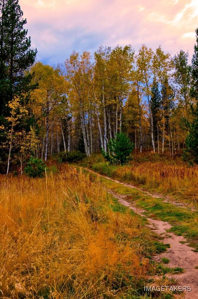 Ashton Idaho - Season Of Color (c) by IMAGETAKERS
