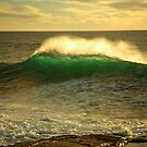 sunrise swell. bicheno, tasmania by tim buckley | bodhiimages