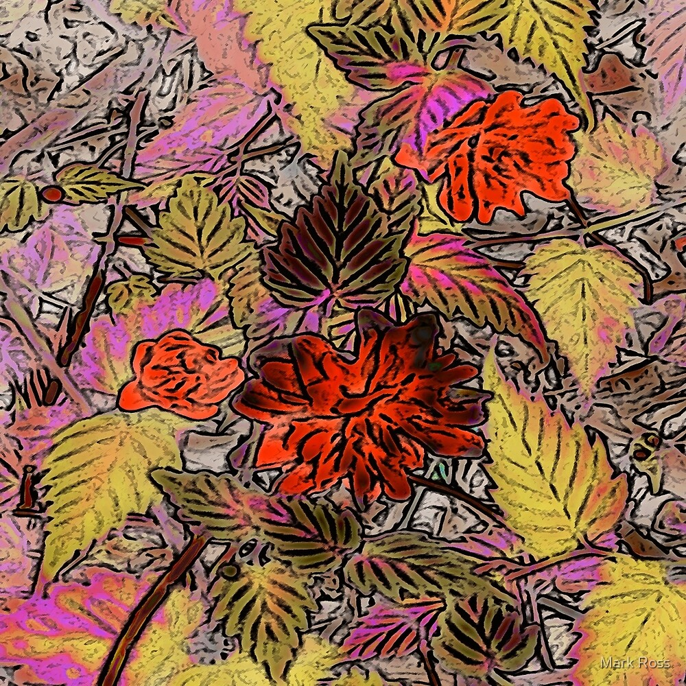 Floral #12a by Mark Ross