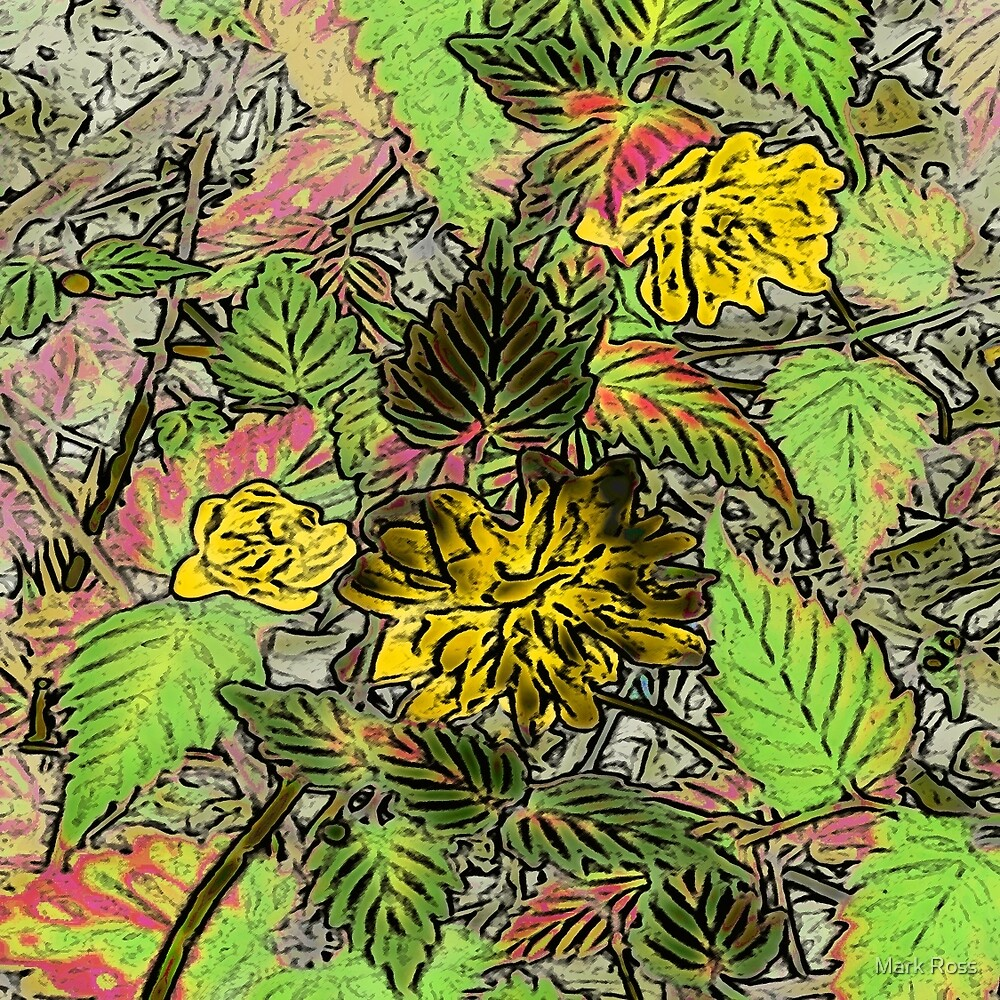 Floral #12b by Mark Ross