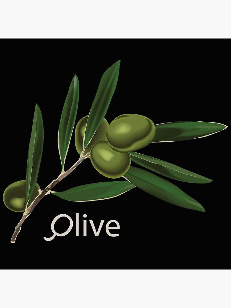 Olive Branch by a-roderick