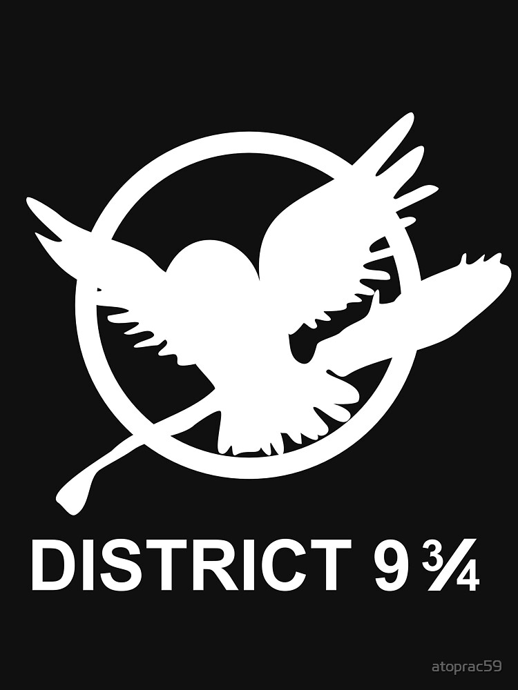 District 9 3/4 by atoprac59
