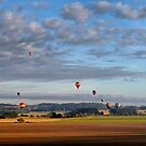 Hot Air Ballon Race - Albany Oregon - by Charles & Patricia   Harkins ~ Picture Oregon