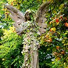 Autumn Angel by RSMphotography
