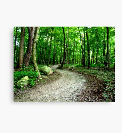 Summer Path Canvas Print