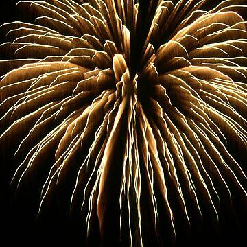 Firework, Santa Ana, Costa Rica, shot 2 by guytsch