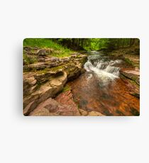 Pure Nature Canvas Print