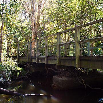The Bridge by kordis