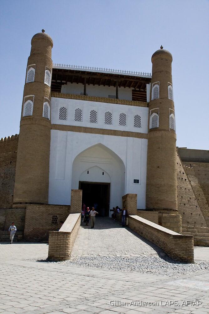 Bukhara Ark by Gillian Anderson LAPS, AFIAP
