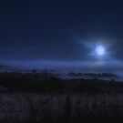 Country Moonrise by Herb Spickard