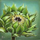 Closed sunflower by tanyabond