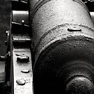cannon by Heike Nagel