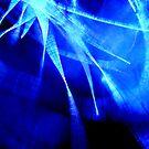 Bluesky Fireworks by MacroXscape