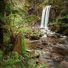 Hopetoun Falls by Scott Carr