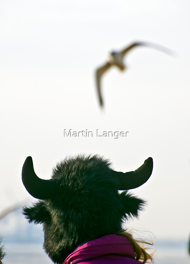 Fool's Paradise by Martin Langer