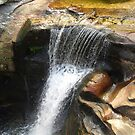 Screw Auger Falls, Grafton Notch, Maine by Debbie Robbins