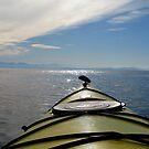 Kayak summer by Al Williscroft