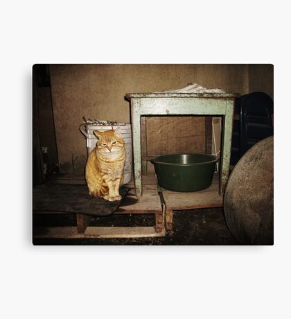 I'm Not on the Table, Mom... Canvas Print